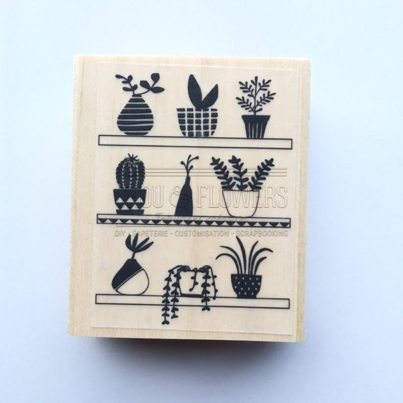 """TAMPON BOIS """" plantes sur étagère"""""""