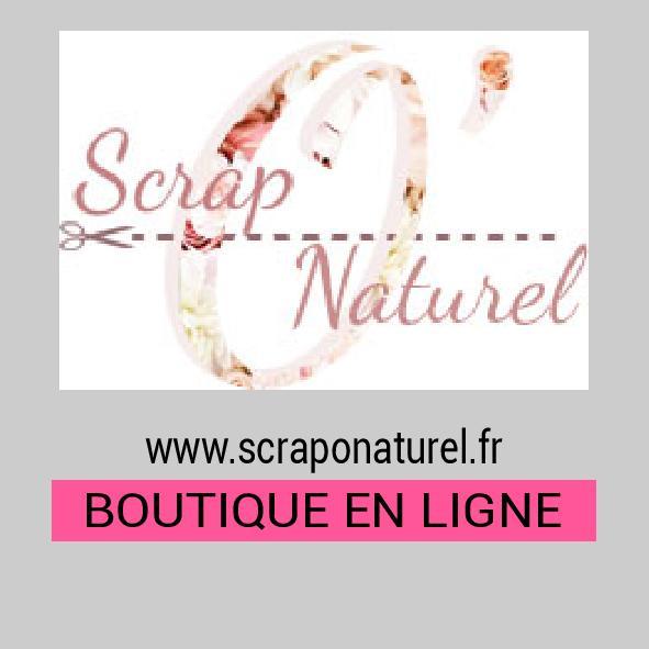 scraponaturel-page-001.jpg