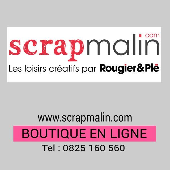 visuel_scrapmalin-page0.jpg